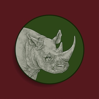 Rhinoceros drawing