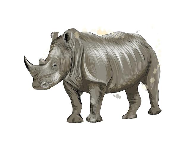 Носорог из всплеска акварели, цветной рисунок, реалистичный. иллюстрация