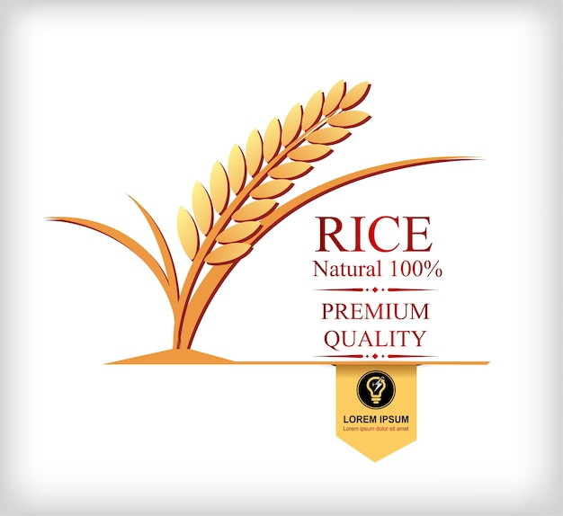 Rice gold and leaf logo vector design