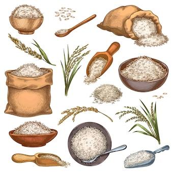 쌀 자루와 곡물입니다. 빈티지 가방, 그릇, 곡물이 든 국자. 귀 스파이크와 씨앗 더미. 다채로운 새겨진 농장 유기농 식품 벡터 세트입니다. 힙에 농촌 제품을 요리. 음식이 포함된 패키지
