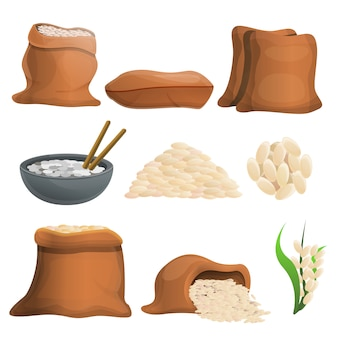 Rice set, cartoon style