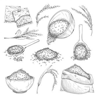 米のスケッチ。穀物の袋、ボウルの種子、ビニール袋の穀物、植物の耳、スクープアイコンコレクションの稲作。健康食品のスケッチ。農業と収穫のコンセプト