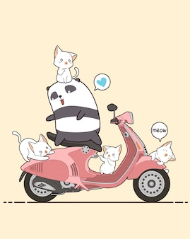 라이더 팬더와 분홍색 오토바이와 귀여운 고양이.