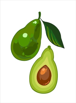 Спелый авокадо с зелеными листьями и половина авокадо с семенами, рисованной иллюстрации, изолированные на белом фоне. свежий мультяшный овощ.