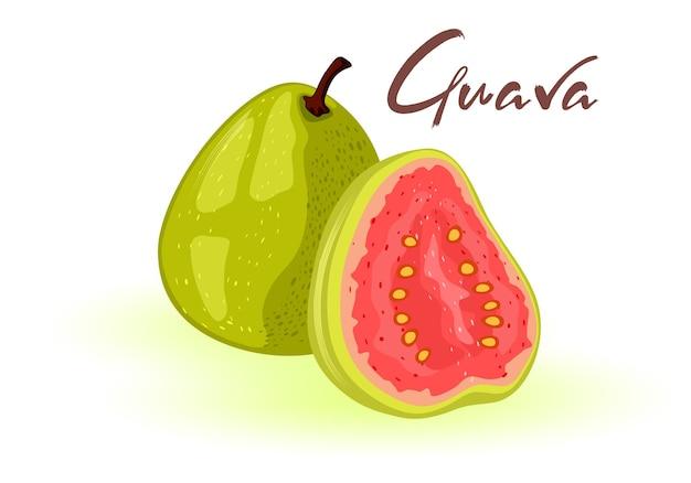 잘 익은 구아바 전체와 절반. 녹색 껍질과 붉은 달콤하거나 신맛이 나는 펄프가 내부에있는 둥글고 타원형의 열대 이국적인 과일.