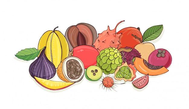 Ripe juicy tropical fruits lying together isolated on white background - tamarillo, passion fruit, mentega, fig, carambola, feijoa, papaya, longan, rambutan. colorful hand draw illustration.