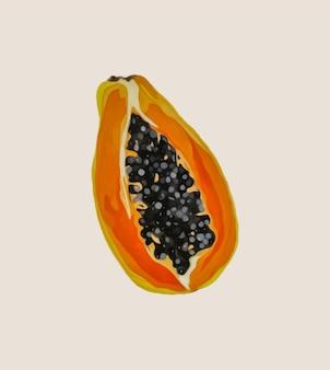 Спелая папайя с семенами. векторная иллюстрация.