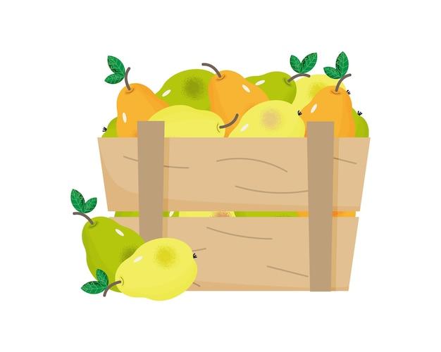 나무 상자에 익은 배 수확 시간 개념 노란색과 녹색 배와 상자 유기농 과일