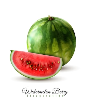 Ripe realistic whole watermelon  vector illustration
