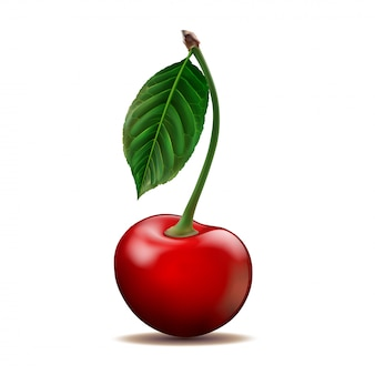Ripe red cherry isolated on white