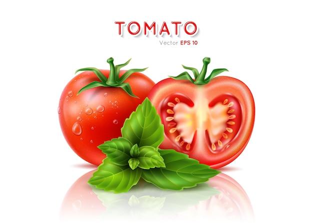 完熟した赤いトマトを半分に切る