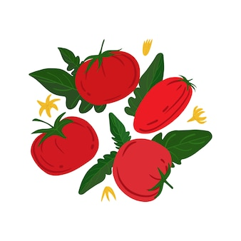 Спелые красные помидоры и листья