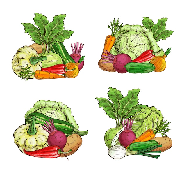 Ripe vegetables and greenery food sketch