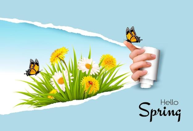 봄 꽃과 나비를 드러내는 손으로 종이 배경을 찢었습니다.