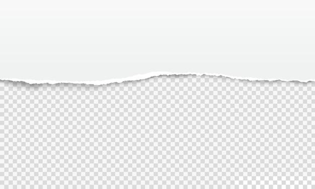破れた紙の端、白い破れたページストリップ。現実的な水平のぼろぼろのノートブックシート、透明なベクトルの背景にボロボロの紙のエッジ。破損したページの境界線、スクラップブッキング要素
