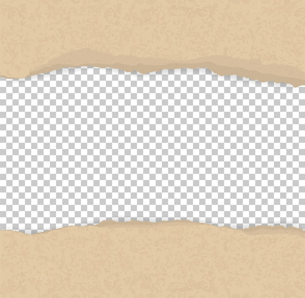 Ripped paper edges for background.