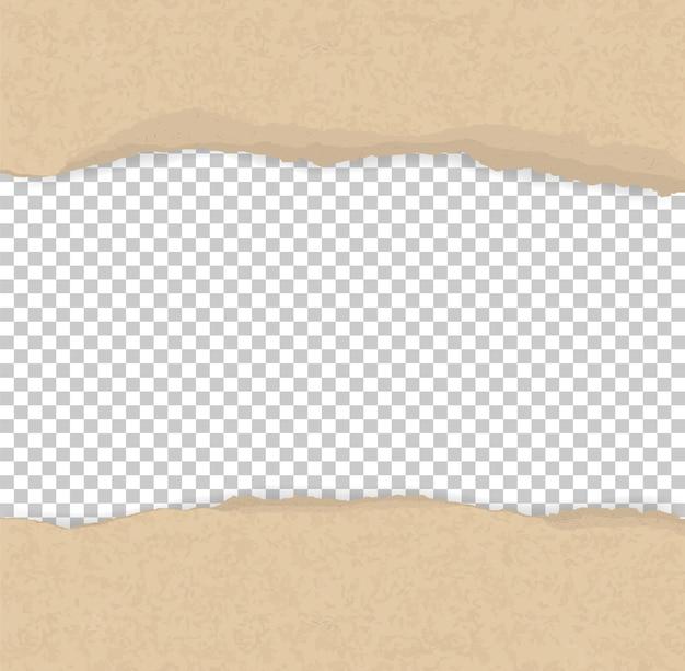 背景のために紙の端を切り取った。
