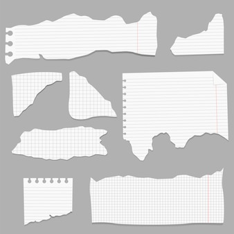 Ripped papers, torn page pieces and scrapbook note paper piece. texture page, textured memo sheet or notebook shred.
