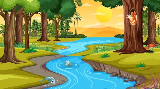 Река через лесную сцену во время заката