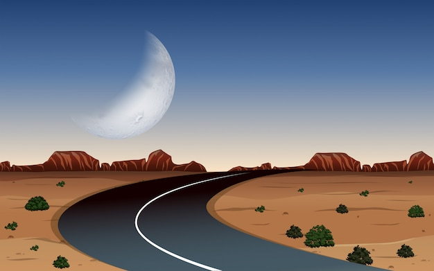 A road at desert night time