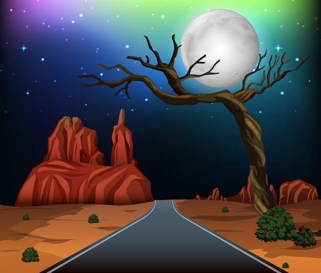 A road through desert