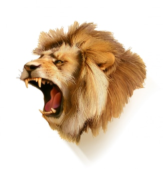 Roaring lion, head illustration