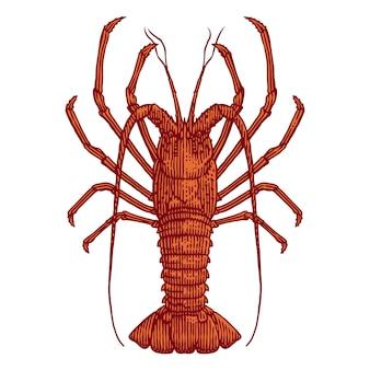 Иллюстрация гравюра рок омаров