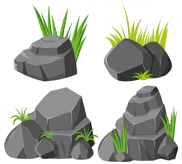 Rocks and grasses on white background