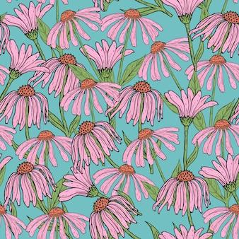 美しいエキナセアの花、茎、青の背景に葉を持つロマンチックな花のシームレスなパターン。アンティークスタイルで描かれた開花ハーブ手。壁紙、包装紙のイラスト。