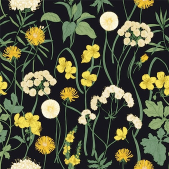 Romantic seamless pattern with blooming wild yellow flowers and perennial herbaceous plants on black background.