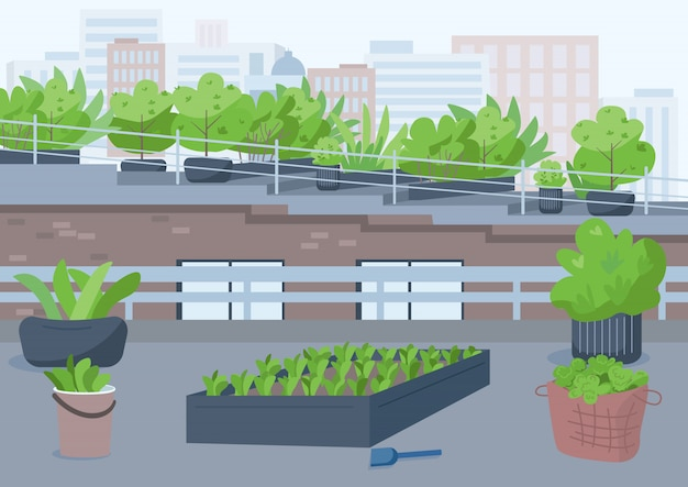 Rooftop gardening  color  illustration. outdoor urban place for cultivating potted plants. grow greenery outside. highrise building roof  cartoon exterior with cityscape on background