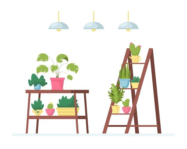 Интерьер комнаты или офиса с различными комнатными растениями на полках, подставках, столах.