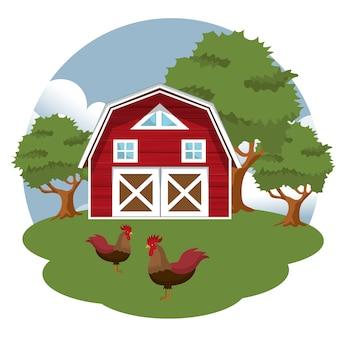Петухи на скотном дворе