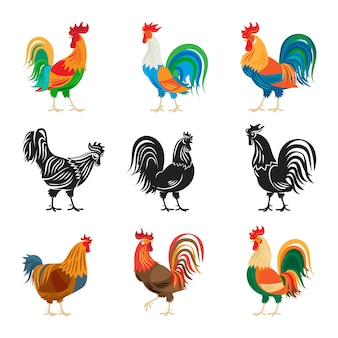 Roosters and rooster silhouettes