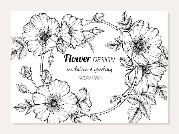 ローザ・カナイナの花のフレームのイラストレーションのイラスト。