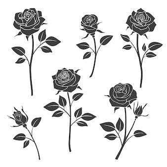 장미 꽃 봉 오리 실루엣.