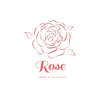 Rose emblem in a linear style.