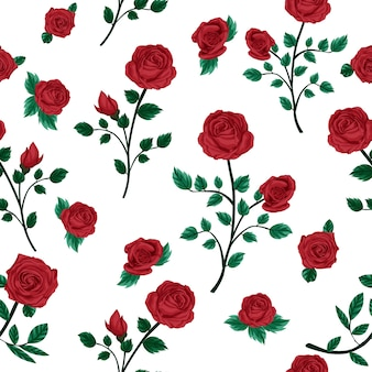 Rose flower pattern with white background