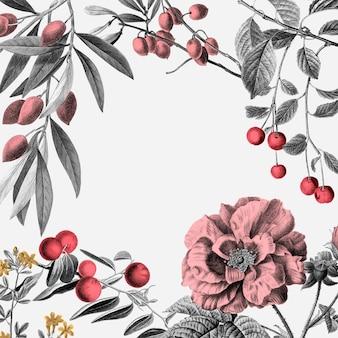 Rose frame vector pink vintage botanical illustration and fruits on white background