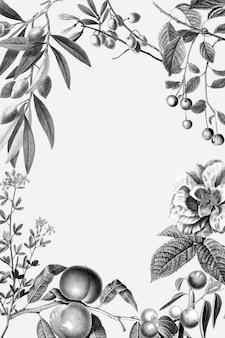 Rose frame vintage floral vector illustration and fruits on white background