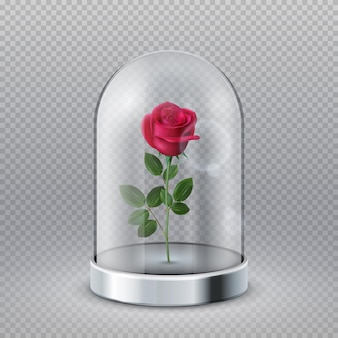 Rose in glass dome. isolated beautiful red flower under transparent flask. fairy tale symbol, beauty interior decoration vector illustration. rose bloom under glass, flower in flask dome