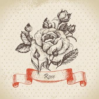 ローズ。手描きのヴィンテージデザイン