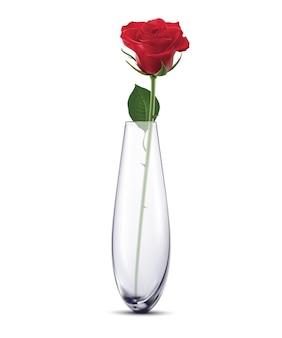 孤立した白い花瓶にバラ。