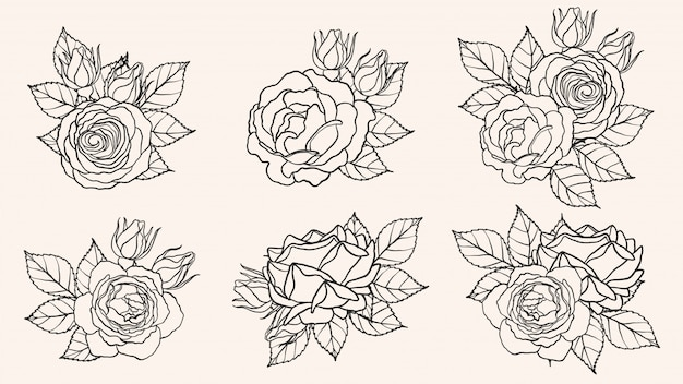ab4bc88c2942a Roses Vectors, Photos and PSD files | Free Download