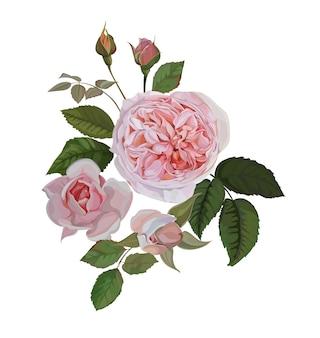 흰색 배경에 고립 된 장미 핑크 꽃다발