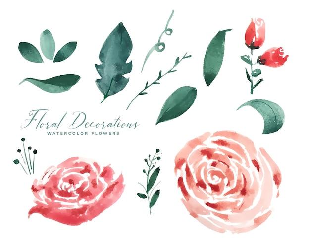 Collezione di elementi di decorazione floreale dell'acquerello rosa