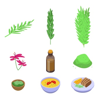 Rosemary icons set. isometric set of rosemary vector icons for web design isolated on white space