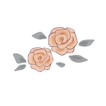バラ。白い背景に。