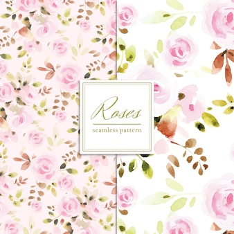 Roses pattern collection
