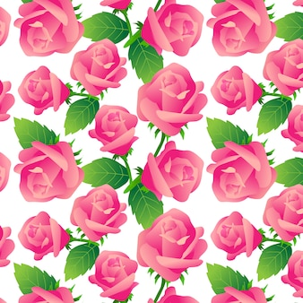 Roses pattern on white background